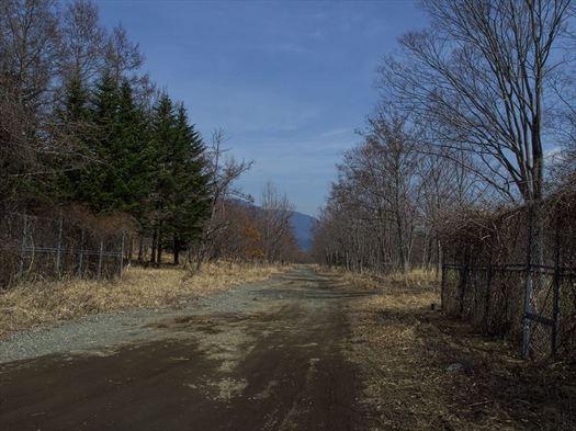 P3220114_R.jpg